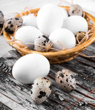 Quail and chicken eggs Royalty Free Stock Photos