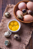 Quail and chicken eggs Royalty Free Stock Images