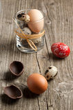 Quail, chicken and red easter eggs Stock Image