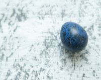 Quail colorful egg on stone background. Royalty Free Stock Images