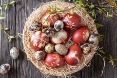 Easter eggs dyed with onion peels and quail eggs in a basket. Quail and Easter eggs dyed with onion peels in a wicker basket with fresh willow branches, top view royalty free stock photo