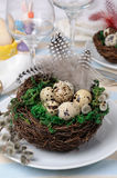 Quail easter eggs in a nest on wooden table Stock Image