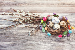 Quail Easter eggs in small nest and willow branch on wooden background. Toned, soft focus Royalty Free Stock Image