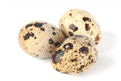 Quail egg Royalty Free Stock Photo