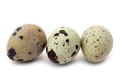 Quail egg. On white background isolated macro close-up photo Royalty Free Stock Photos