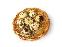 Quail egg. In braided basket Royalty Free Stock Image