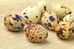 Quail Egg Royalty Free Stock Photos
