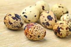 Free Quail Egg Royalty Free Stock Photos - 26151558