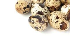 Quail egg background Stock Images