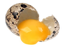 Quail egg broken Royalty Free Stock Image