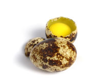 Quail Egg broken Royalty Free Stock Photos