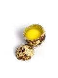 Quail Egg Broken Stock Photography