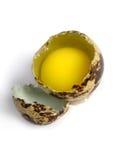 Quail Egg Broken Stock Image