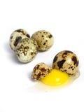 Quail Egg broken Stock Photo