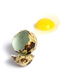 Quail Egg broken Royalty Free Stock Images