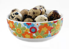 Quail egg. S in a bowl Royalty Free Stock Photos