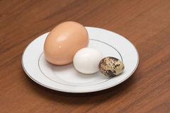 Quail egg. Fresh healthy food Royalty Free Stock Photo