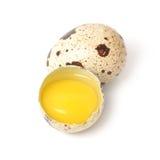 Quail egg isolated on white background. Stock Photos