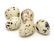 Quail egg Stock Photo
