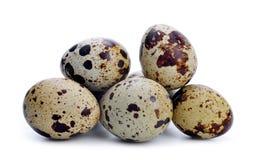 Quail egg Stock Photography