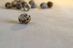 Quail egg on a linen. Fabric on a background of blurred group of eggs in the background. Still life in warm tones, the view from the side on level of eye look.n Royalty Free Stock Photography
