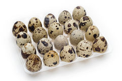 Quail Egg Pack. Pack of twenty diet quail eggs on white Stock Images