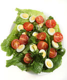 Quail egg salad Stock Images