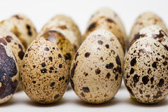 Quail egg Royalty Free Stock Photography
