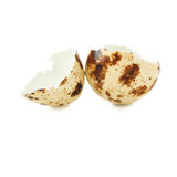 Quail egg shell cracked and isolated over white background Royalty Free Stock Photos