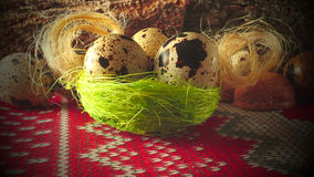 Quail egg, three in a nest of dry grass Stock Photography