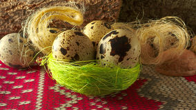 Quail egg, three in a nest of dry grass and fiber Stock Image