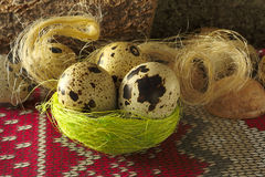 Quail egg, three in a nest of dry grass and fiber on ornament Stock Image