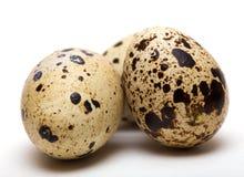 Quail egg Stock Photos