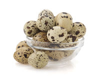 Quail egg on white Stock Photo
