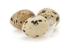 Quail egg on white Royalty Free Stock Photos