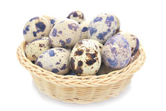 Quail Egg. On the white background Royalty Free Stock Images