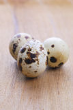 Quail Egg  on  wooden table. Quail Egg Royalty Free Stock Images