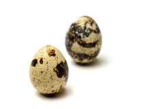 Quail eggs. On theWhite Background Stock Images