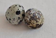 Quail eggs Royalty Free Stock Photography