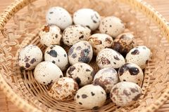 Quail eggs Stock Images