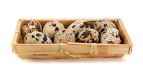 Quail eggs Stock Photos