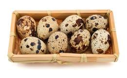 Quail eggs Royalty Free Stock Photo
