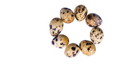 Quail eggs. On a white background it is isolated Stock Photos