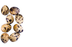 Quail eggs. On a white background it is isolated Stock Photo
