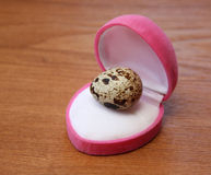 Quail eggs royalty free stock images