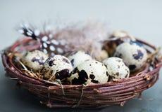 Free Quail Eggs Royalty Free Stock Photos - 90354958
