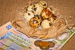 Quail eggs on the background of banknotes Stock Image