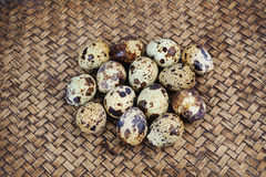 Quail eggs on bamboo mat Royalty Free Stock Photos