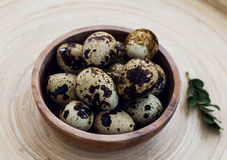 Quail eggs. In a bambu bowl Stock Images