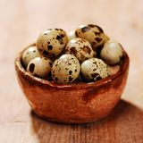 Quail eggs in a basket Royalty Free Stock Photography